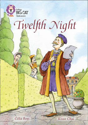 Twelfth Night Band 17/Diamond by Celia Rees