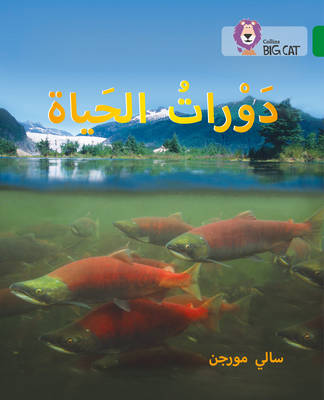 Collins Big Cat Arabic Readers Life Cycles: Level 15 by Sally Morgan