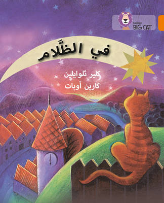 Collins Big Cat Arabic Readers In the Dark: Level 6 by Claire Llewellyn
