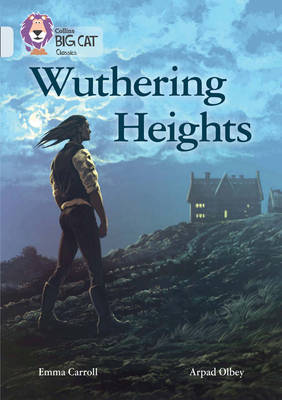 Wuthering Heights Band 17/Diamond by Emma Carroll