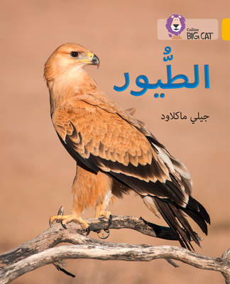Collins Big Cat Arabic Readers Birds: Level 9 by Jilly Macleod