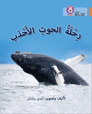 Collins Big Cat Arabic Readers Journey of Humpback Whales: Level 12 by Andy Belcher