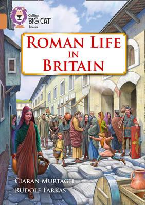 Roman Life in Britain Band 12/Copper by Ciaran Murtagh