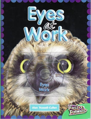 Eyes at Work by Alan Trussell-Cullen