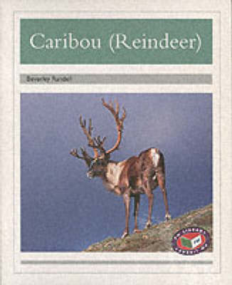PM Silver Animal Facts Polar Animals Caribou Reindeer (x6) by Beverley Randell