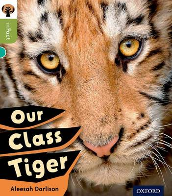 Oxford Reading Tree Infact: Level 7: Our Class Tiger by Alessah Darlison