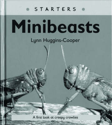 Read Write Inc. Comprehension: Module 24: Children's Books: Mini Beasts Pack of 5 Books by Lynn Huggins-Cooper, Ruth Miskin