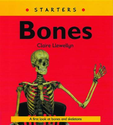 Read Write Inc. Comprehension: Module 9: Children's Books: Bones Pack of 5 Books by Claire Llewellyn, Ruth Miskin