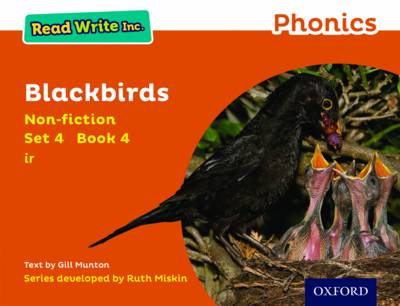 Read Write Inc. Phonics: Orange Set 4 Non-Fiction 4 Blackbirds by Gill Munton