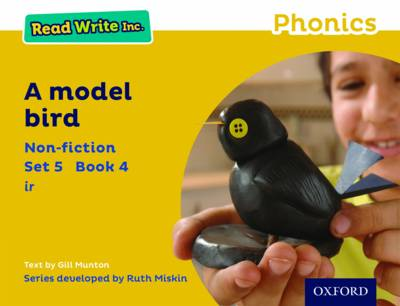Read Write Inc. Phonics: Yellow Set 5 Non-Fiction 4 a Model Bird by Gill Munton