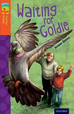 Oxford Reading Tree Treetops Fiction: Level 13: Waiting for Goldie by Susan Gates