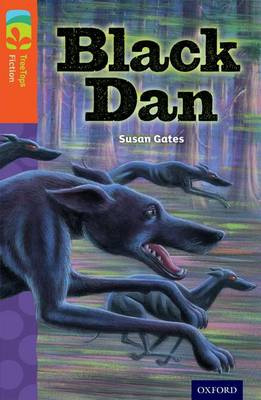 Oxford Reading Tree Treetops Fiction: Level 13 More Pack A: Black Dan by Susan Gates