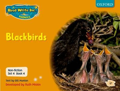 Read Write Inc. Phonics: Non-fiction Set 4 (orange): Blackbirds - Book 4 by Gill Munton, Ruth Miskin