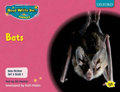 Read Write Inc. Phonics: Non-fiction Set 3 (Pink): Bats by Gill Munton, Ruth Miskin