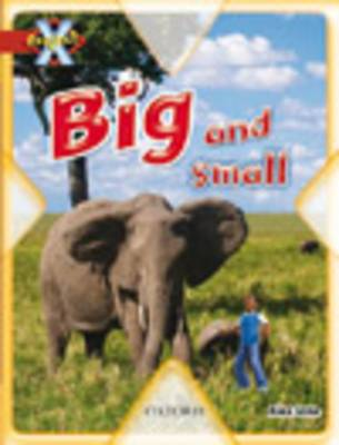 Project X: Big and Small: Big and Small by Alex Lane