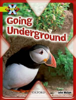 Project X: Underground: Going Underground by John Malam