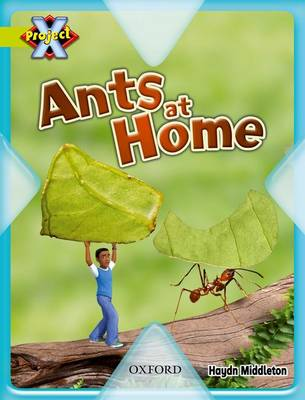 Project X: Underground: Ants at Home by Haydn Middleton