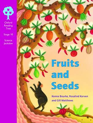 Oxford Reading Tree: Levels 10-11: Cross-curricular Jackdaws: Pack (6 Books, 1 of Each Title) by Kenna Bourke, Rosalind Kerven, Gill Matthews, Jenny Roberts