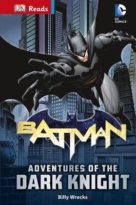 DC Comics Batman Adventures of the Dark Knight by Billy Wrecks