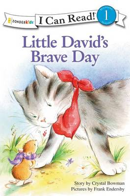 Little David's Brave Day by Crystal Bowman