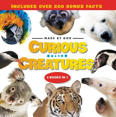 Curious Creatures 4 Books in 1 by Zondervan Publishing