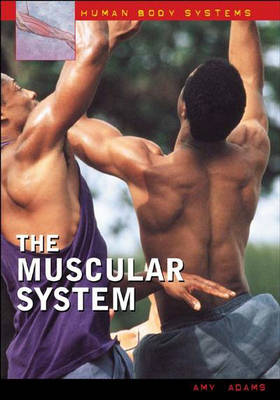 The Muscular System by Amy Adams