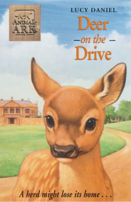 Deer on the Drive by Lucy Daniels