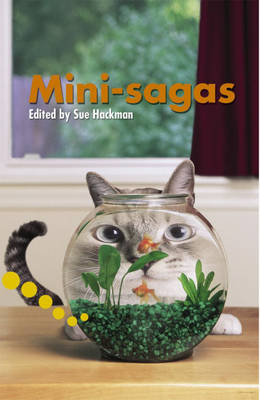 Mini Sagas Pupil Book Level 2-3 Readers by Sue Hackman