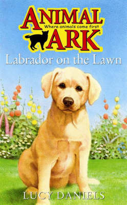 Labrador on the Lawn by Lucy Daniels