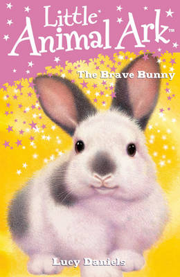 The Brave Bunny by Lucy Daniels