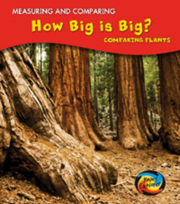 How Big is Big? by Vic Parker