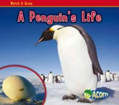 A Penguins Life by Nancy Dickmann