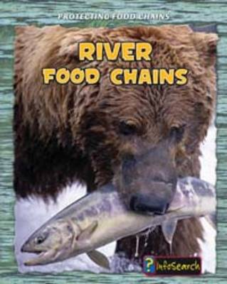 River Food Chains by Rachel Lynette