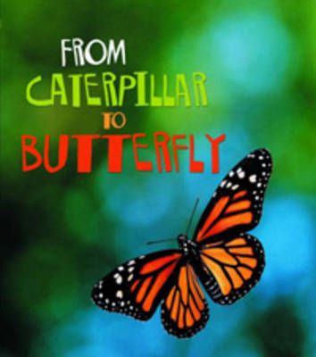 From Caterpillar to Butterfly by Anita Ganeri