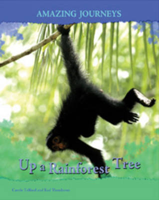 Up a Rainforest Tree by Carole Telford, Rod Theodorou