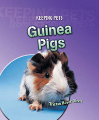 Guinea Pigs by Tristan Boyer Binns