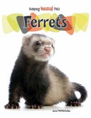 Ferrets by June McNicholas