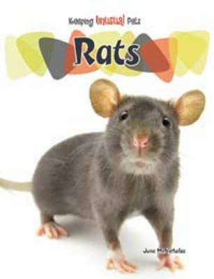 Rats by June McNicholas