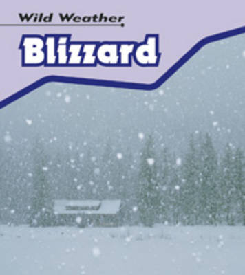 Blizzard by Catherine Chambers