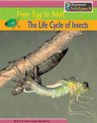 The Life Cycle of Insects by Louise Spilsbury, Louise Spilsbury