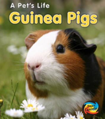 Guinea Pigs by Anita Ganeri