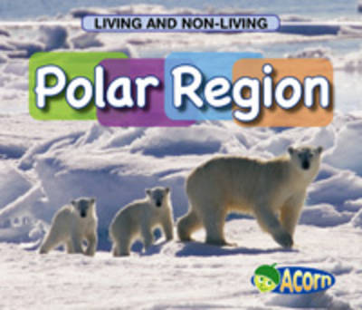Polar Region by Cassie Mayer
