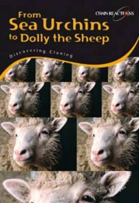 Sea Urchins to Dolly the Sheep: Discover Cloning by Sally Morgan