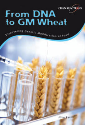 DNA to GM Wheat: Discover Genetically Modified Food by Sally Morgan
