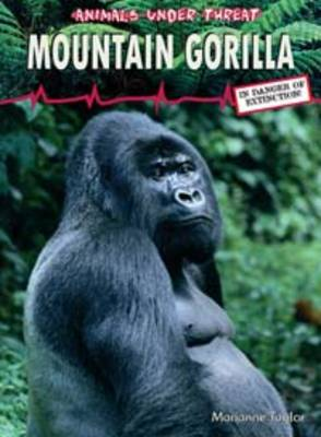 Mountain Gorilla by Marina Taylor