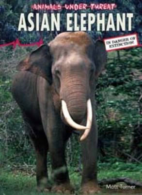 Asian Elephant by Matt Turner