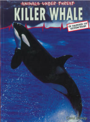 Killer Whale by Carol Inskipp