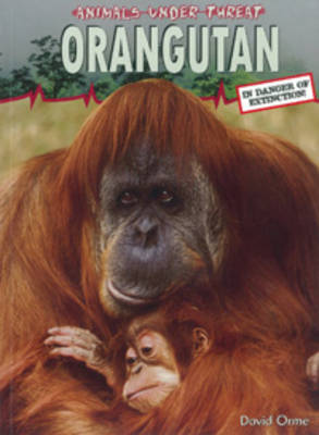 Orangutang by David Orme