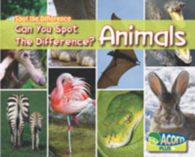 Can You Spot the Difference Animals by Rebecca Rissman