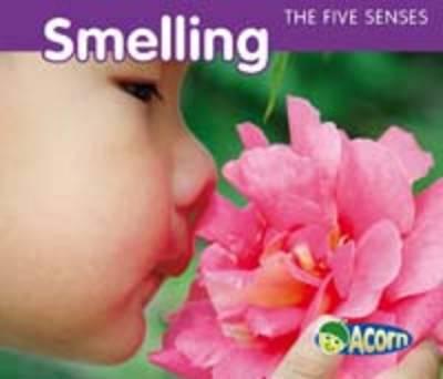 The Five Senses Pack A by Rebecca Rissman